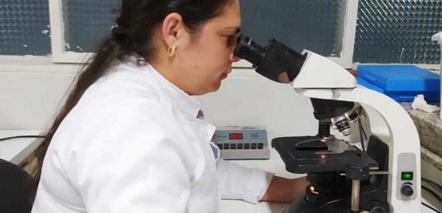 Laboratório do HNSC amplia serviços e passa a oferecer exame toxicológico